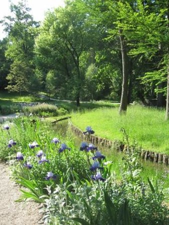 CONPARC Hotel & Conference Centre Bad Nauheim: Iris garden on the path near the hotel