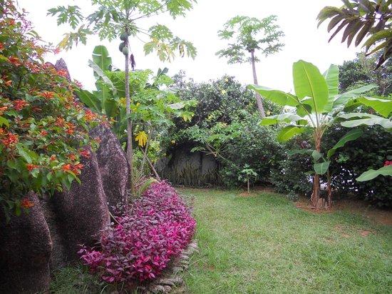 Cocotier du Rocher: Vue jardin chambre Coco Sec