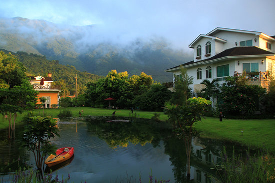 Tree Lake B&B Hualien: 發現樹湖晨曦