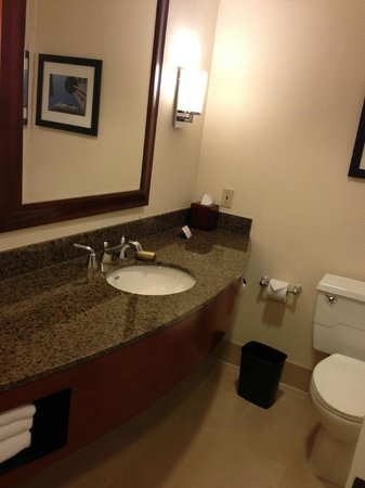 Los Angeles Marriott Burbank Airport: Bathroom
