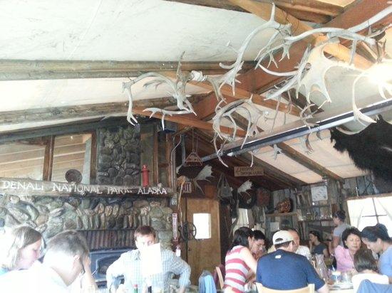 Denali Park Salmon Bake Cabins: Antler Ceiling!