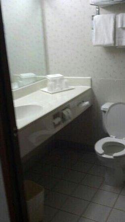 Quality Inn: Bathroom clean, towels worn