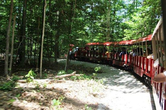 Burke Lake Park : Train at Burke Lake State Park