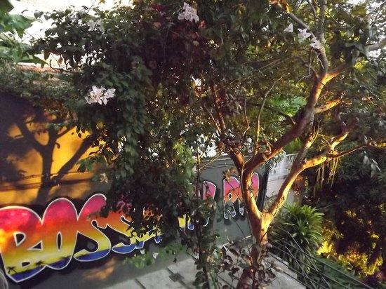 Bossa in Rio Hostel: Arte