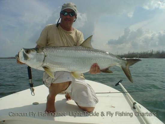 January 2014 picture of cancun fly fishing light tackle for Cancun fishing trips