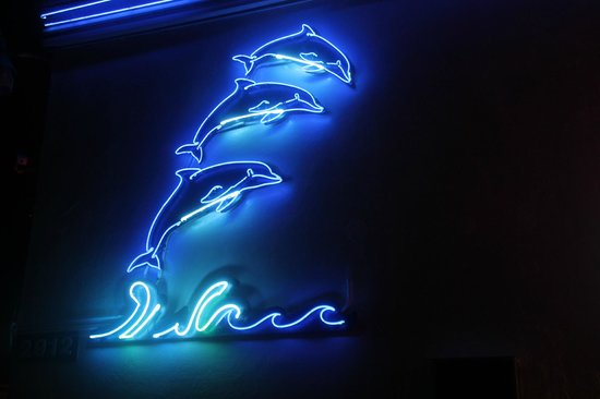 Dolphin Motel: Neon on the front of the motel