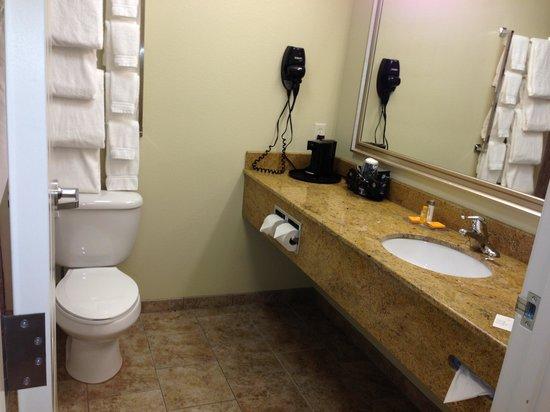 La Quinta Inn & Suites Bismarck: Bathroom