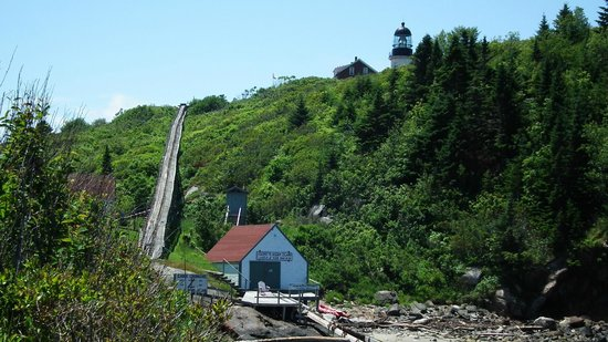 Seguin Island and Lighthouse: Landing at Sequin Island