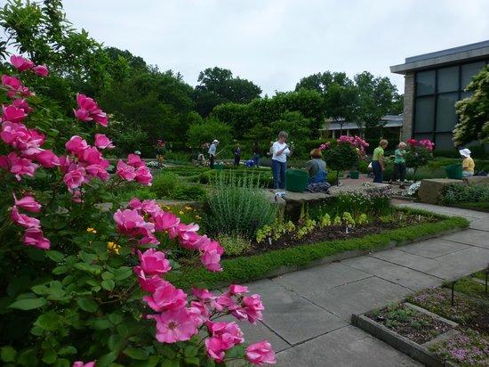 Near The Rose Garden Bild Von Cleveland Botanical Garden Cleveland Tripadvisor