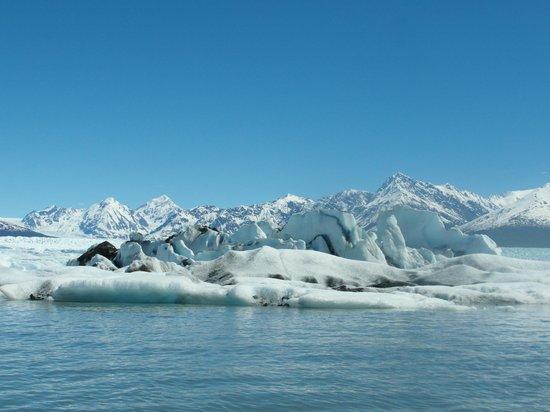 Knik Glacier Day Tour : Knik Glacier