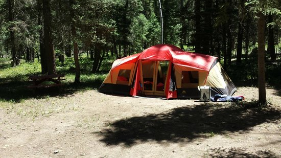 Bruce Spruce Ranch: Tent site