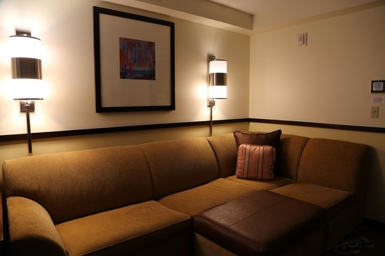 Sensational Cozy Sleeper Sofa Picture Of Hyatt Place Seattle Downtown Andrewgaddart Wooden Chair Designs For Living Room Andrewgaddartcom