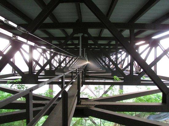 Bridge Walk Picture Of Bridge Walk New River Gorge
