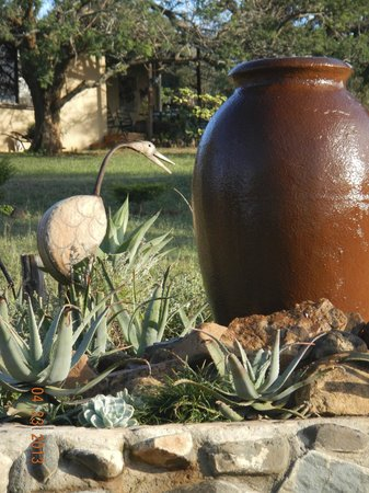 African Spirit Game Lodge: Garden at the lodge