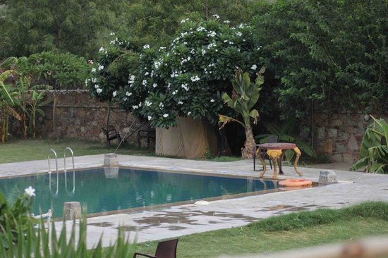Aravali Silence Lakend Resorts & Adventures Pvt. Ltd.: The Superb Pool area
