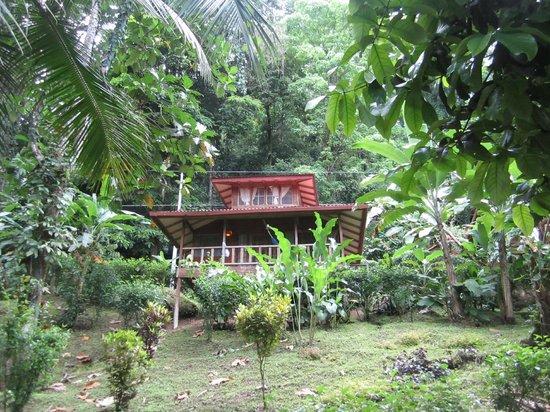 Samasati Retreat & Rainforest Sanctuary: Our bungalow.