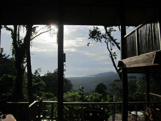 Samasati Retreat & Rainforest Sanctuary: View from the main building.