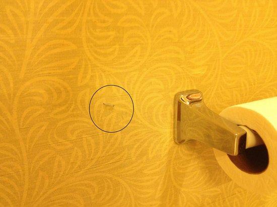 The Grandview at Las Vegas: Random staple in the bathroom wall???