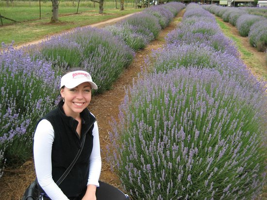 Warratina Lavender Farm: In front of the lavender