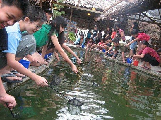 Zenxin Organic Park
