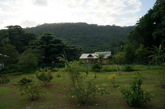 Paodise Guesthouse: Ausblick von der Veranda auf die Berge
