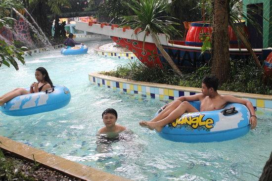 The Jungle Waterpark: jungle