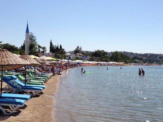 Yali Han Hotel: The beach