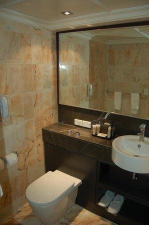 พูลแมนอัคแลนด์: Toilet/Sink Area
