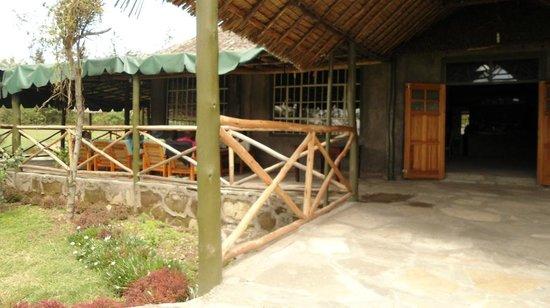 Cactus Eco Camp and Lodge: nice