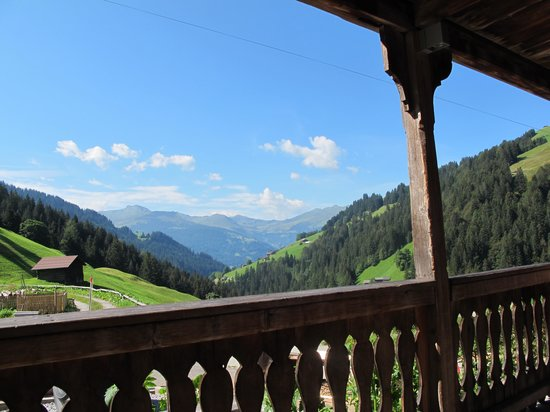 Berghotel Wanna : View