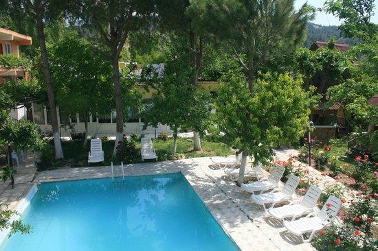 AllgauAllgau Tree Houses  Rooms: açık havuz