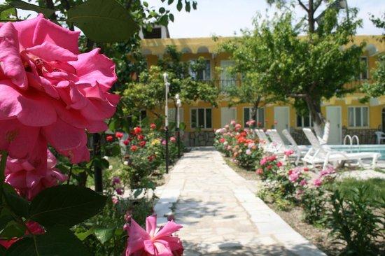 AllgauAllgau Tree Houses  Rooms: bahçe