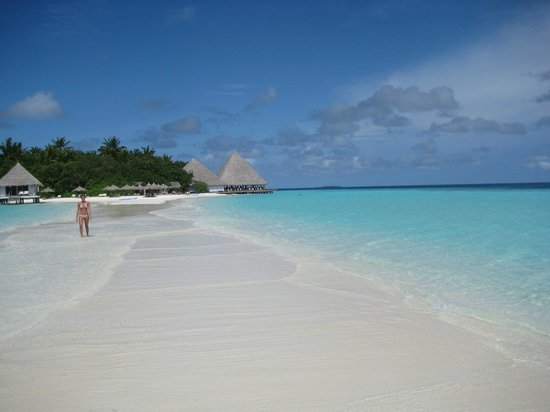 Gangehi Island Resort : La lingua di sabbia