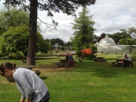 Hilton Glasgow Grosvenor Hotel: Botanical Garden