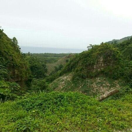 Carretera Samana Toll Road : Toll road las Terrenas