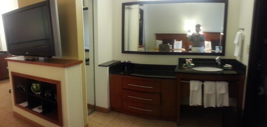 Hyatt Place Atlanta/Cobb Galleria: the room