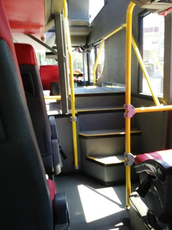 Cityrama Gray Line Portugal : two floors on most of the buses
