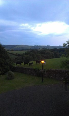 Smeaton Farm: What a calm view at the end of the day