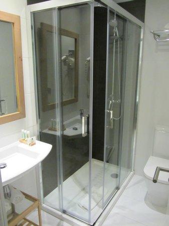 Hotel Los Lagos Nature: El baño