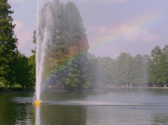 Parcul Alexandru Ioan Cuza: You can view awesome rainbows if it's sunny, thanks to the lake fountain