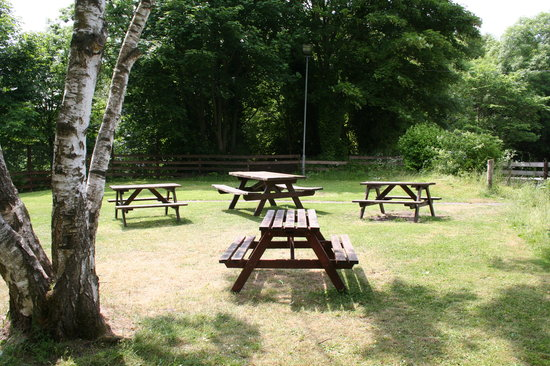 The Red Kite Pub: Lovely beer garden with views of The Derwent Country Park