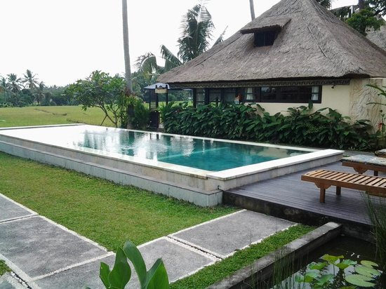 Lodtunduh Sari : View of pool and rice fields