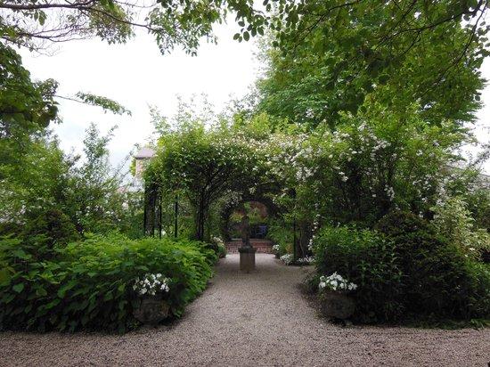 Barakura English Garden: つるバラ