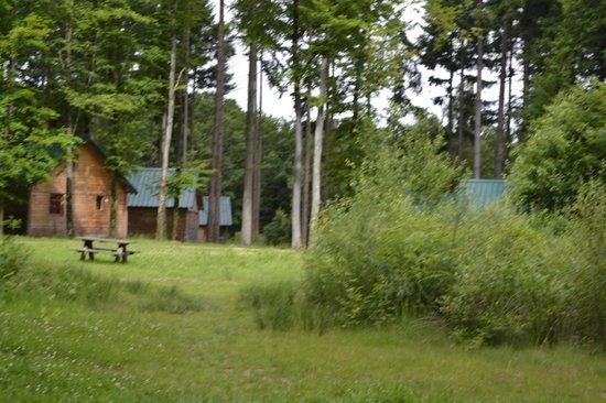 Village Huttopia Senonches : Camping