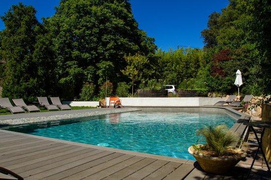 Hotel 96: piscine