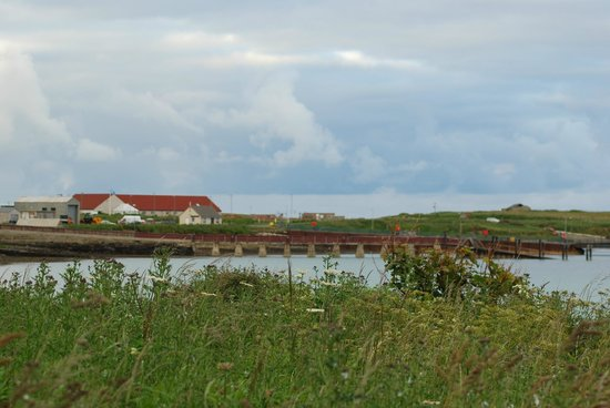 houton bay lodge and ferry terminal picture of orkneylodge orphir