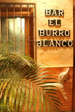 ‪El Burro Blanco Flamenco Bar‬