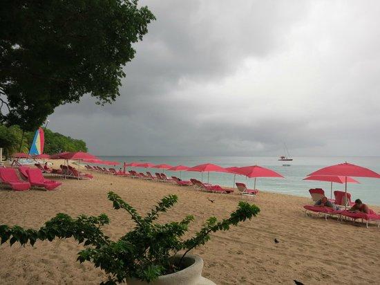 Sandy Lane Hotel: amazing beach