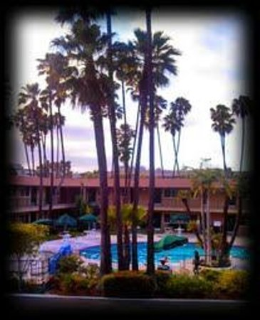 Kings Inn San Diego: This shot was taken from upstairs near my room-midmorning