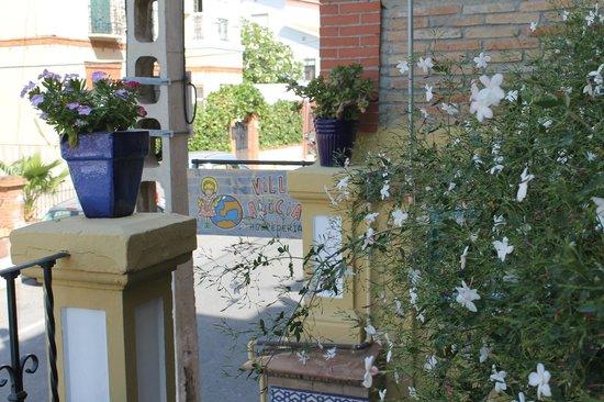 Villa Alicia Guest House: Villa Alicia - esterni
